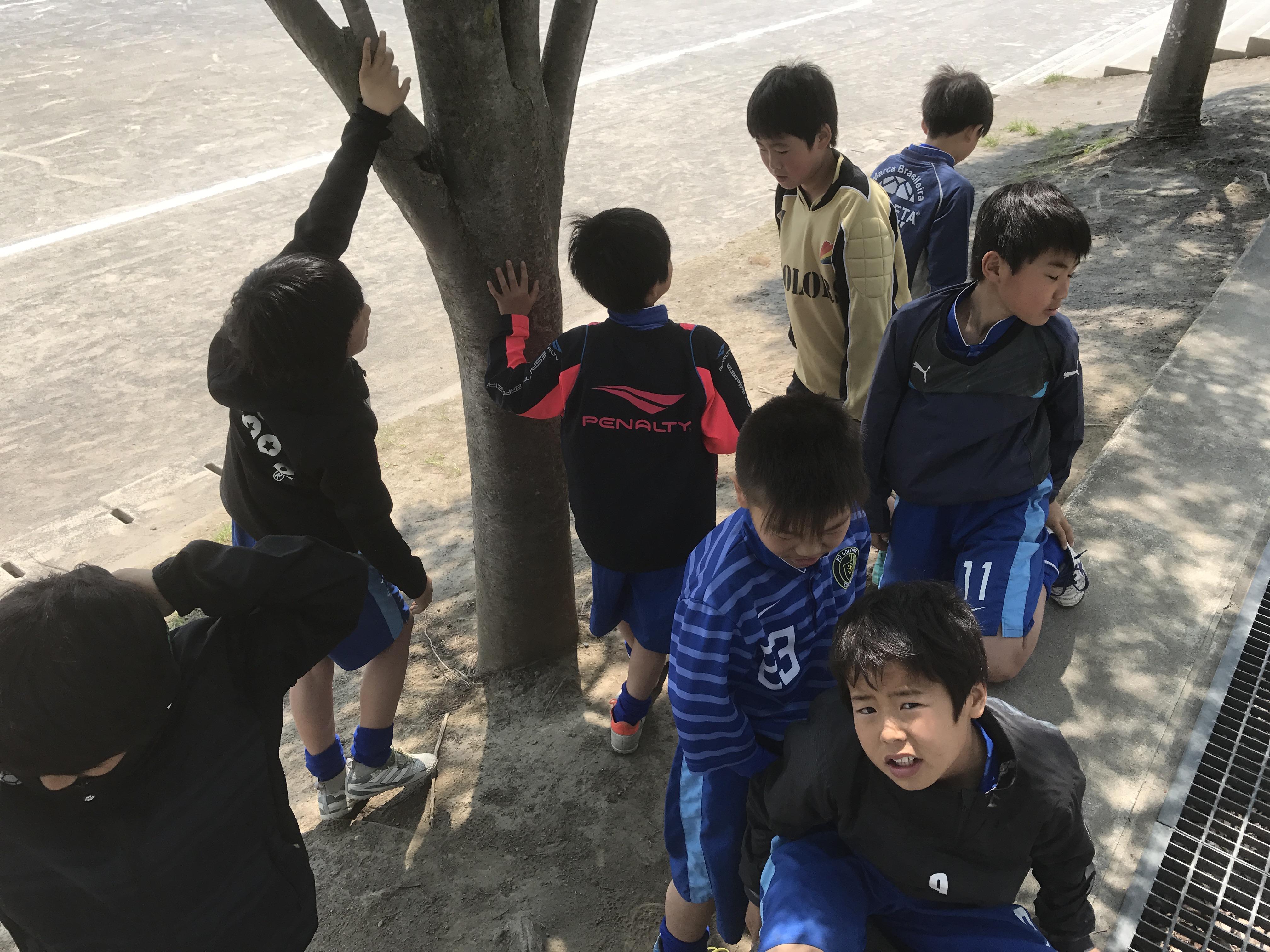 4/29(土) 春季カップ②